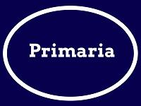 BOTON PRIMARIA
